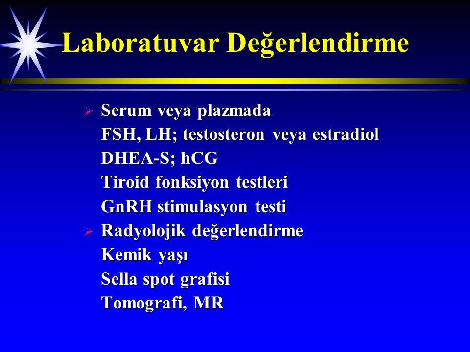 Laboratuvar Değerlendirme