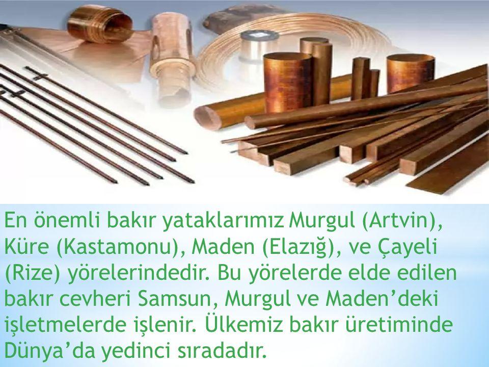 En önemli bakır yataklarımız Murgul (Artvin), Küre (Kastamonu), Maden (Elazığ), ve Çayeli (Rize) yörelerindedir.
