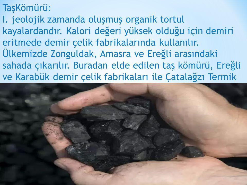 TaşKömürü: