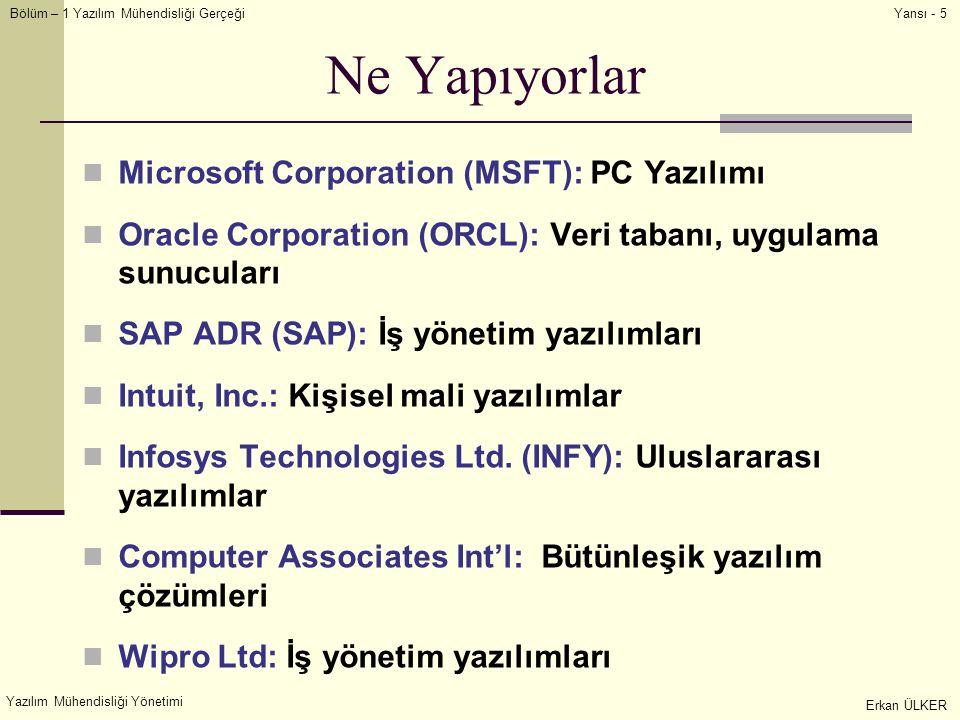Ne Yapıyorlar Microsoft Corporation (MSFT): PC Yazılımı