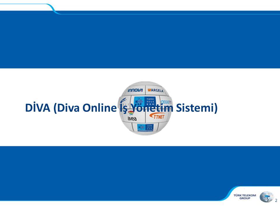 DİVA (Diva Online İş Yönetim Sistemi)