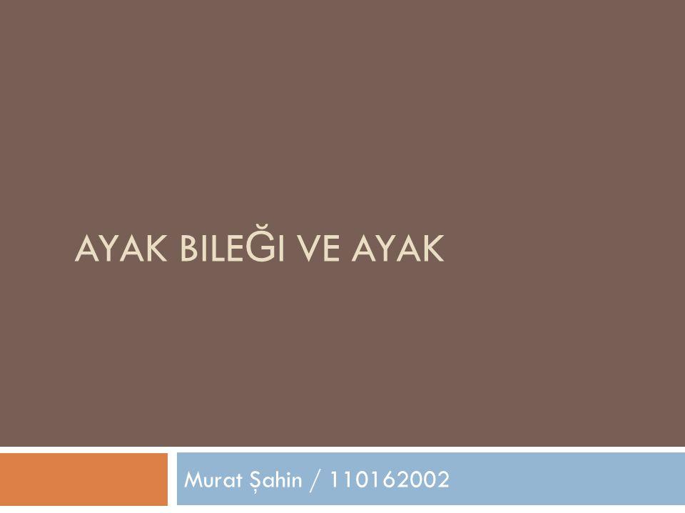 Ayak Bileği Ve Ayak Murat Şahin / 110162002