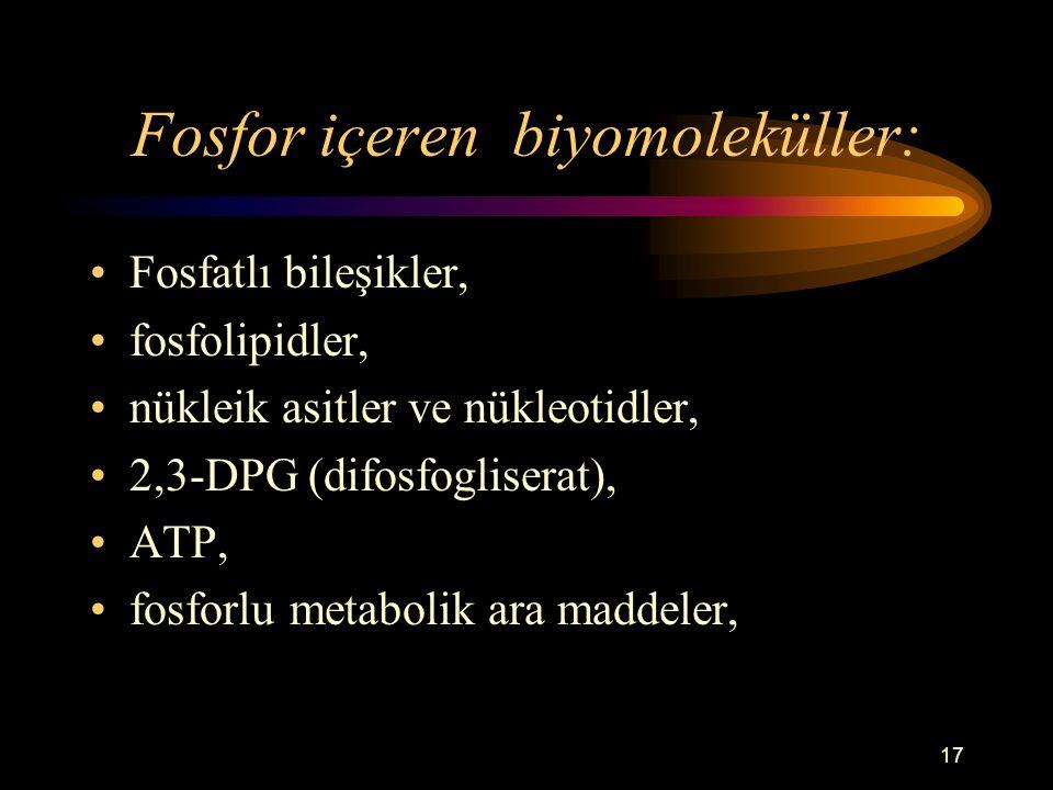 Fosfor içeren biyomoleküller: