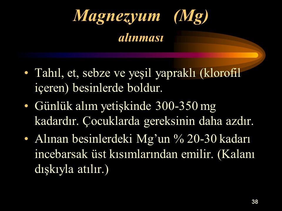 Magnezyum (Mg) alınması