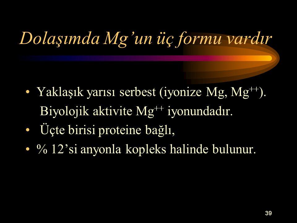 Dolaşımda Mg'un üç formu vardır
