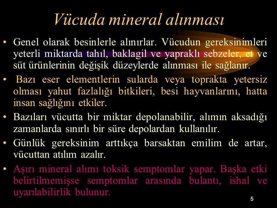Vücuda mineral alınması