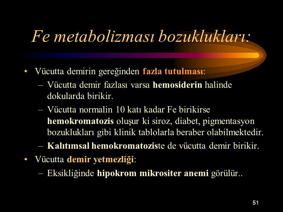 Fe metabolizması bozuklukları: