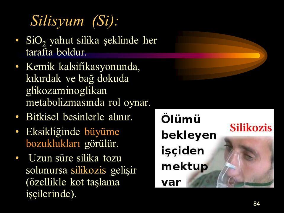 Silisyum (Si): SiO2 yahut silika şeklinde her tarafta boldur.