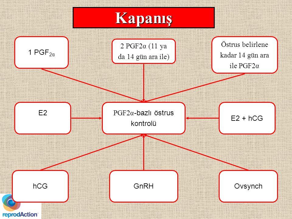 Kapanış 1 PGF2α Östrus belirlene kadar 14 gün ara ile PGF2α