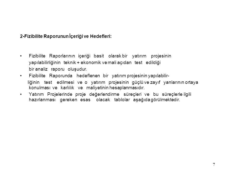 2-Fizibilite Raporunun İçeriği ve Hedefleri: