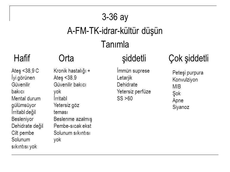 A-FM-TK-idrar-kültür düşün