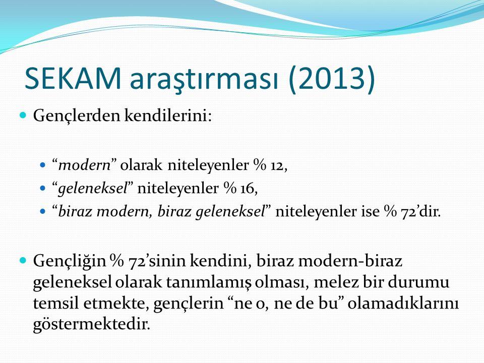 SEKAM araştırması (2013) Gençlerden kendilerini: