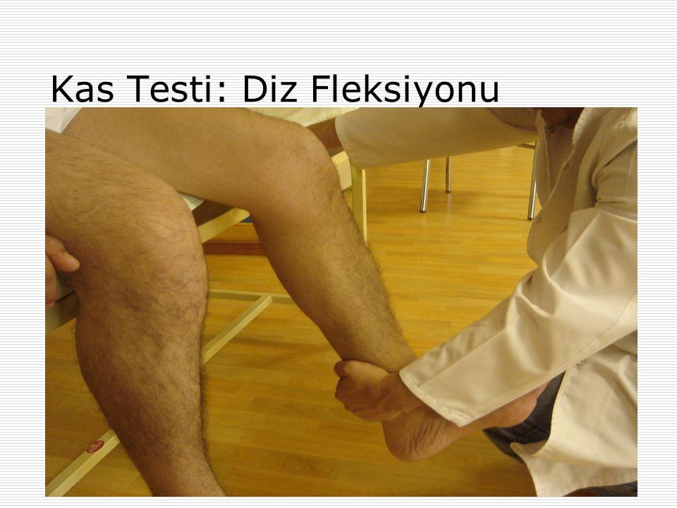 Kas Testi: Diz Fleksiyonu