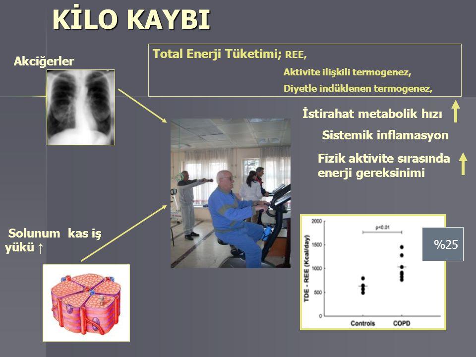 KİLO KAYBI Total Enerji Tüketimi; REE, Akciğerler