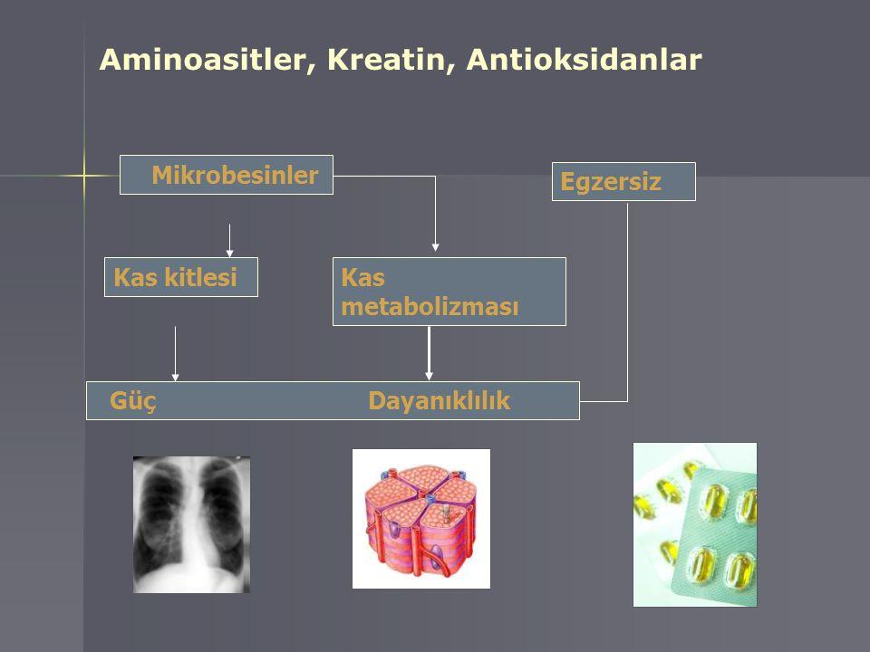 Aminoasitler, Kreatin, Antioksidanlar