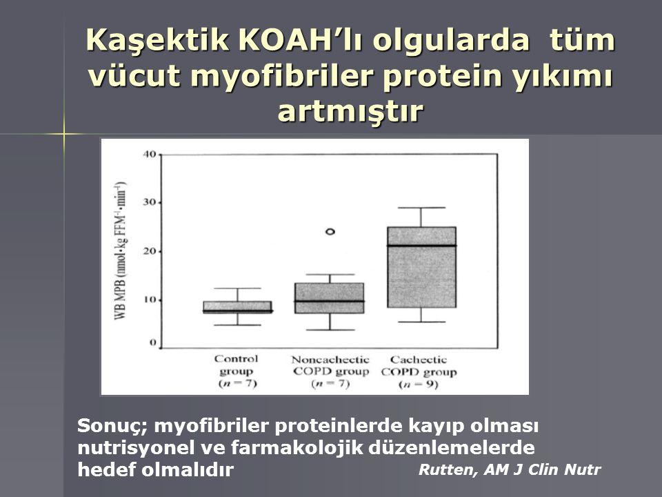 Kaşektik KOAH'lı olgularda tüm vücut myofibriler protein yıkımı artmıştır