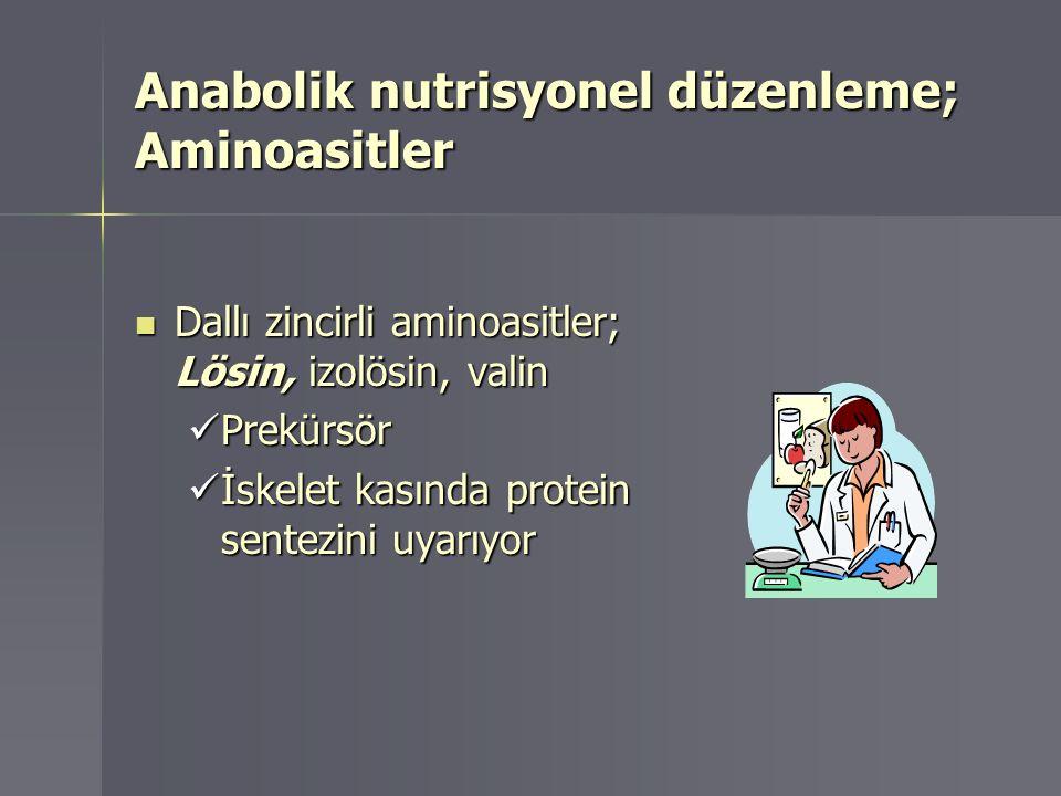 Anabolik nutrisyonel düzenleme; Aminoasitler