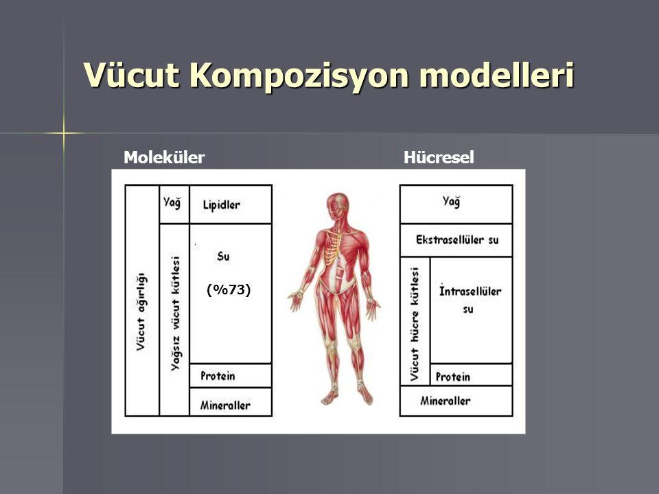 Vücut Kompozisyon modelleri