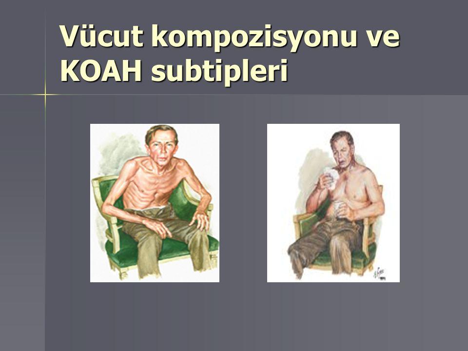 Vücut kompozisyonu ve KOAH subtipleri