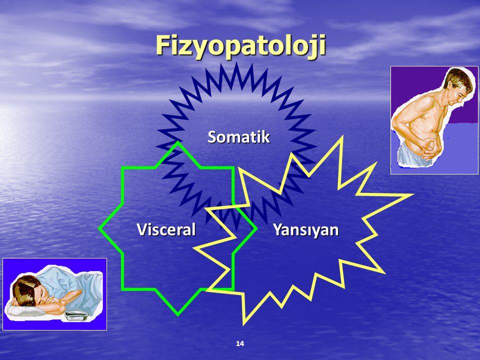Fizyopatoloji Somatik Visceral Yansıyan