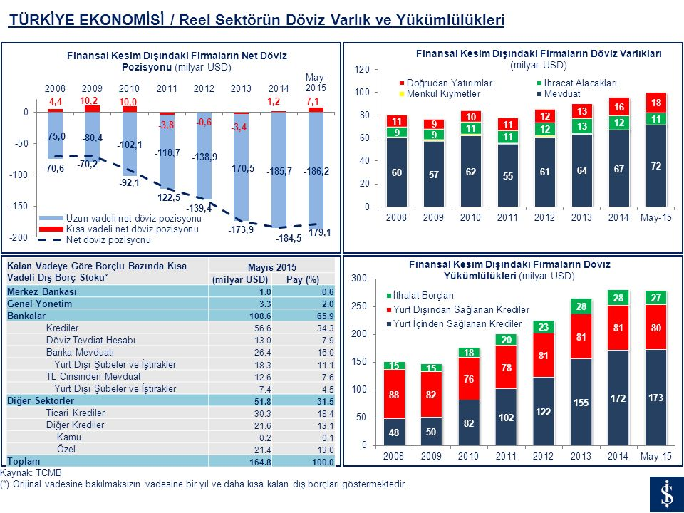 TÜRKİYE EKONOMİSİ / Reel Sektörün Döviz Varlık ve Yükümlülükleri