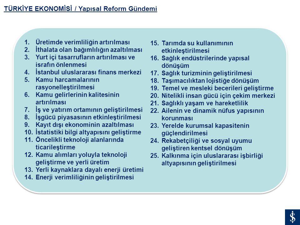 TÜRKİYE EKONOMİSİ / Yapısal Reform Gündemi
