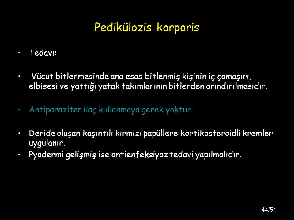Pedikülozis korporis Tedavi: