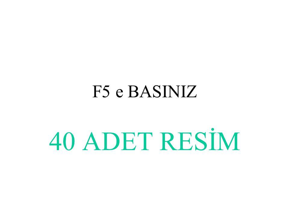 F5 e BASINIZ 40 ADET RESİM