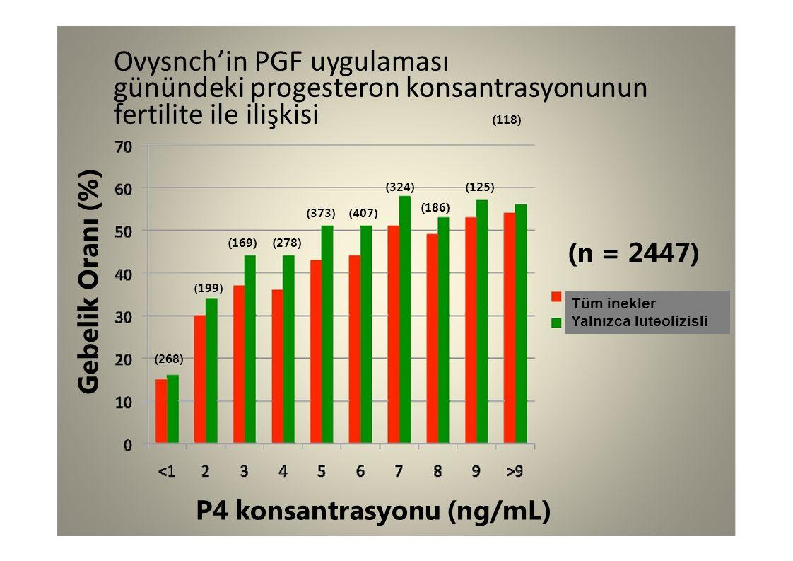 Ovysnch'in PGF uygulaması günündeki progesteron konsantrasyonunun