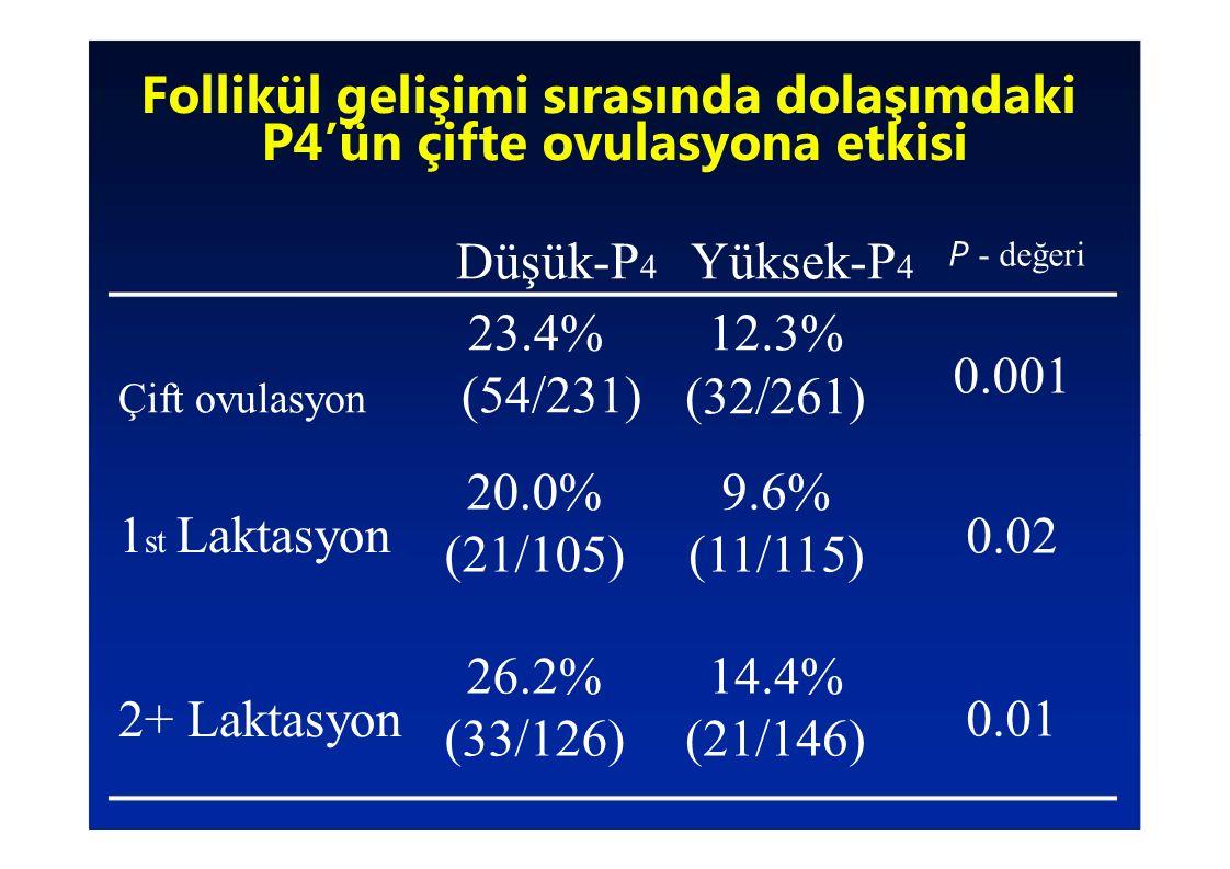 Follikül gelişimi sırasında dolaşımdaki P4'ün çifte ovulasyona etkisi