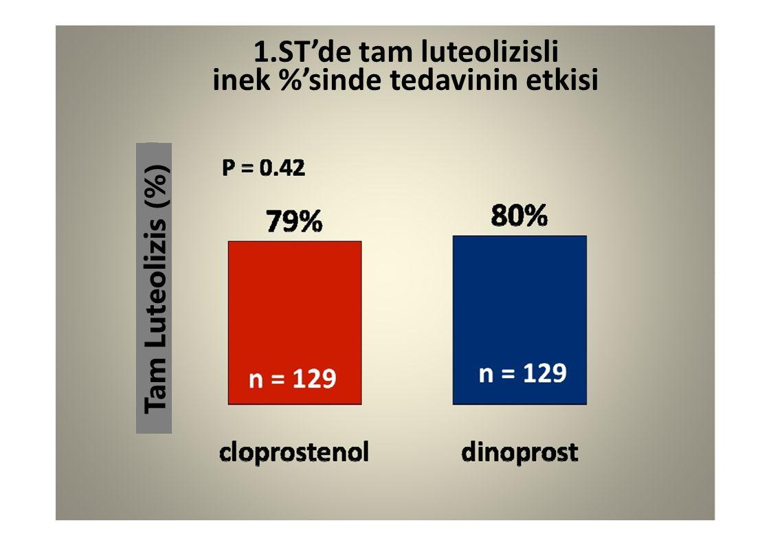 1.ST'de tam luteolizisli inek %'sinde tedavinin etkisi