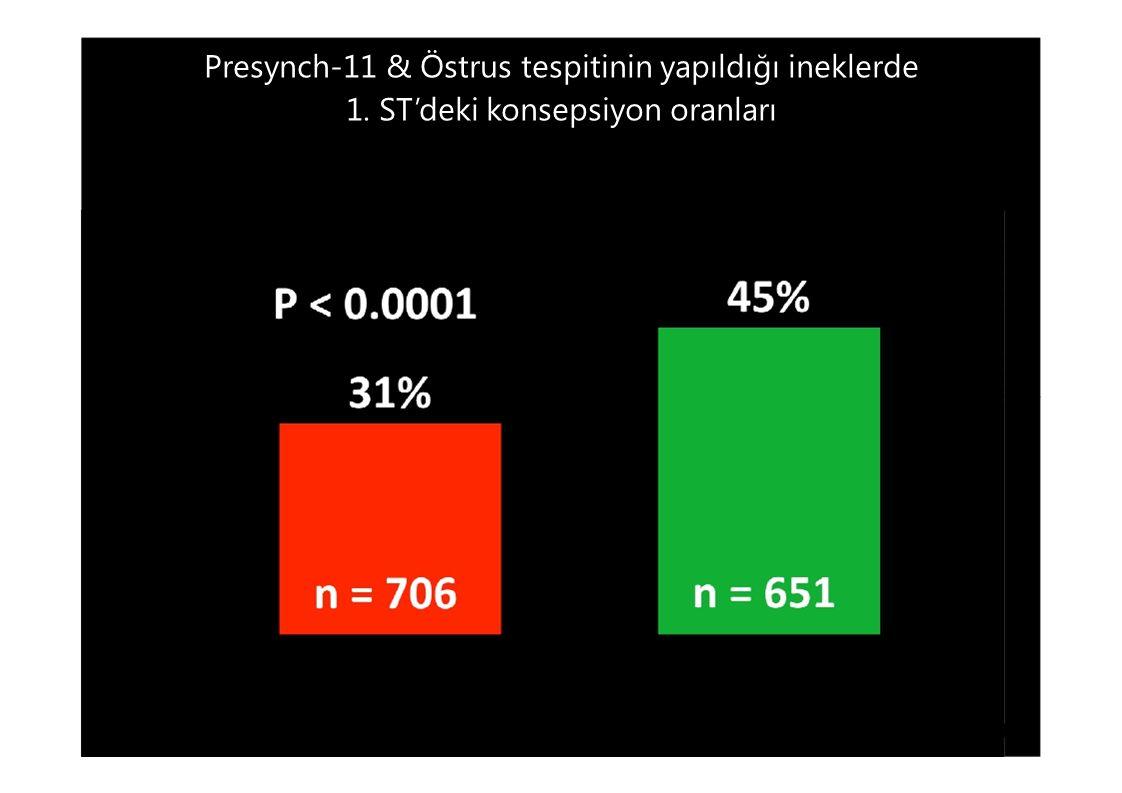 Presynch-11 & Östrus tespitinin yapıldığı ineklerde