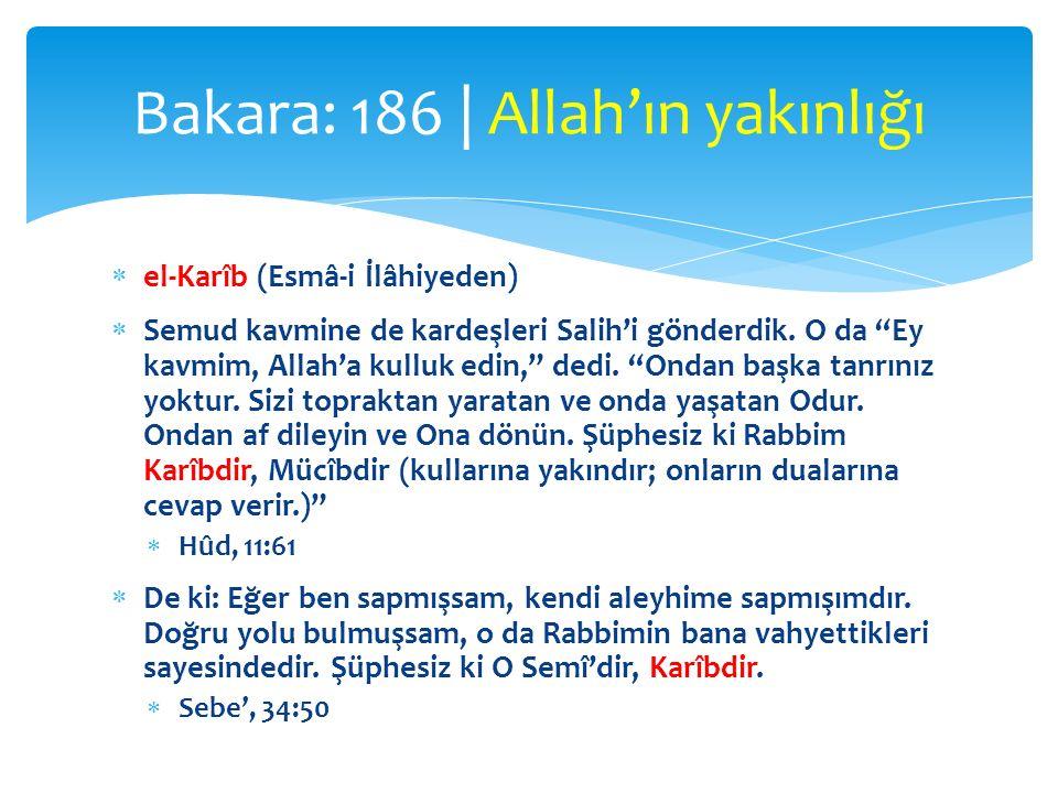 Bakara: 186 | Allah'ın yakınlığı