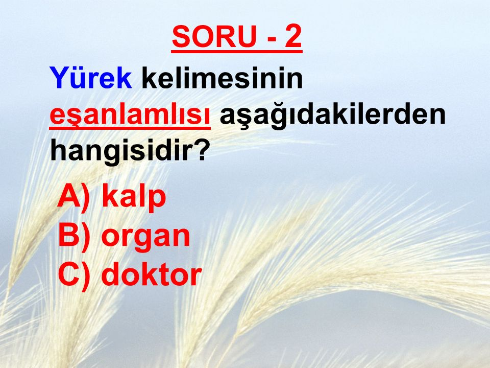 kalp B) organ C) doktor SORU - 2