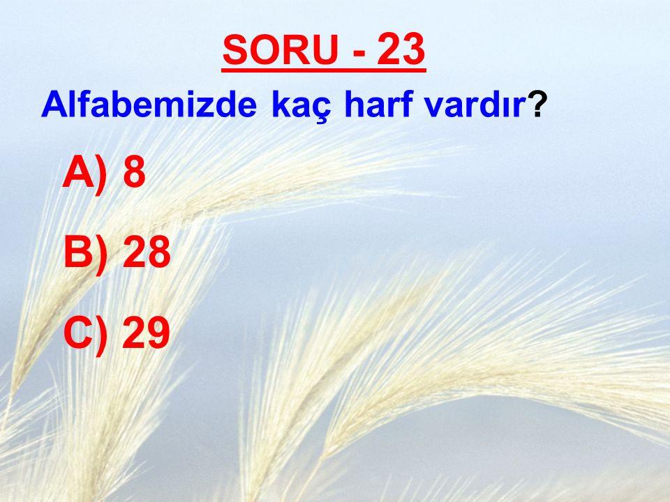 SORU - 23 Alfabemizde kaç harf vardır 8 28 C) 29 TANER ÇELEBİ