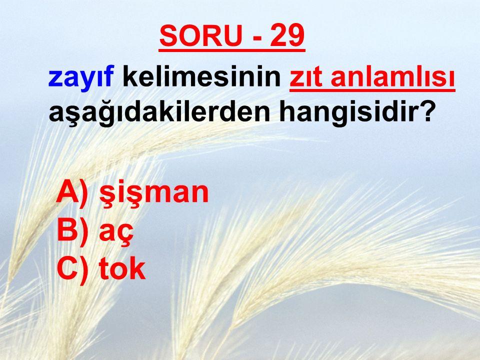şişman B) aç C) tok SORU - 29
