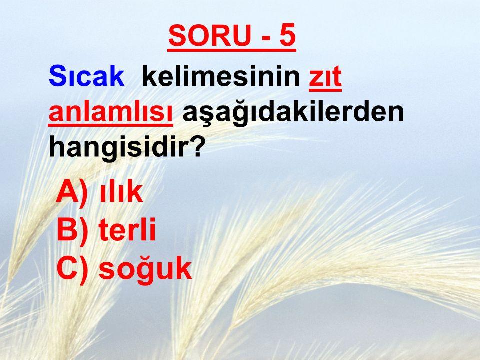 ılık B) terli C) soğuk SORU - 5
