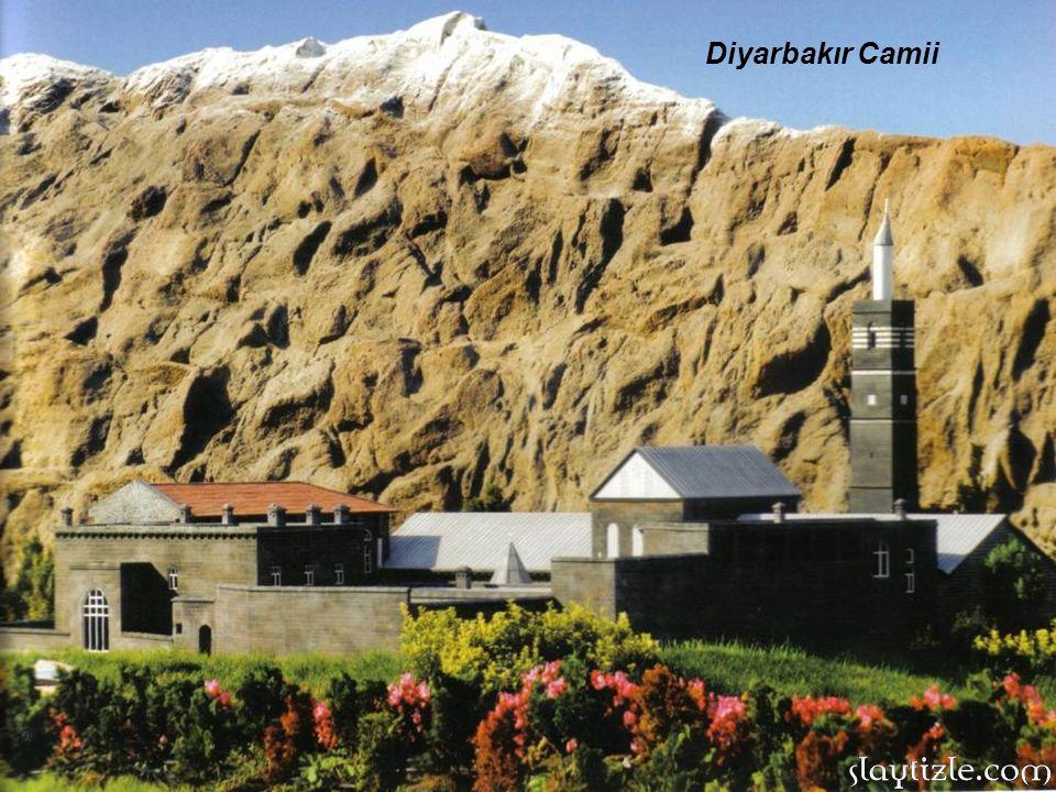 Diyarbakır Camii 20