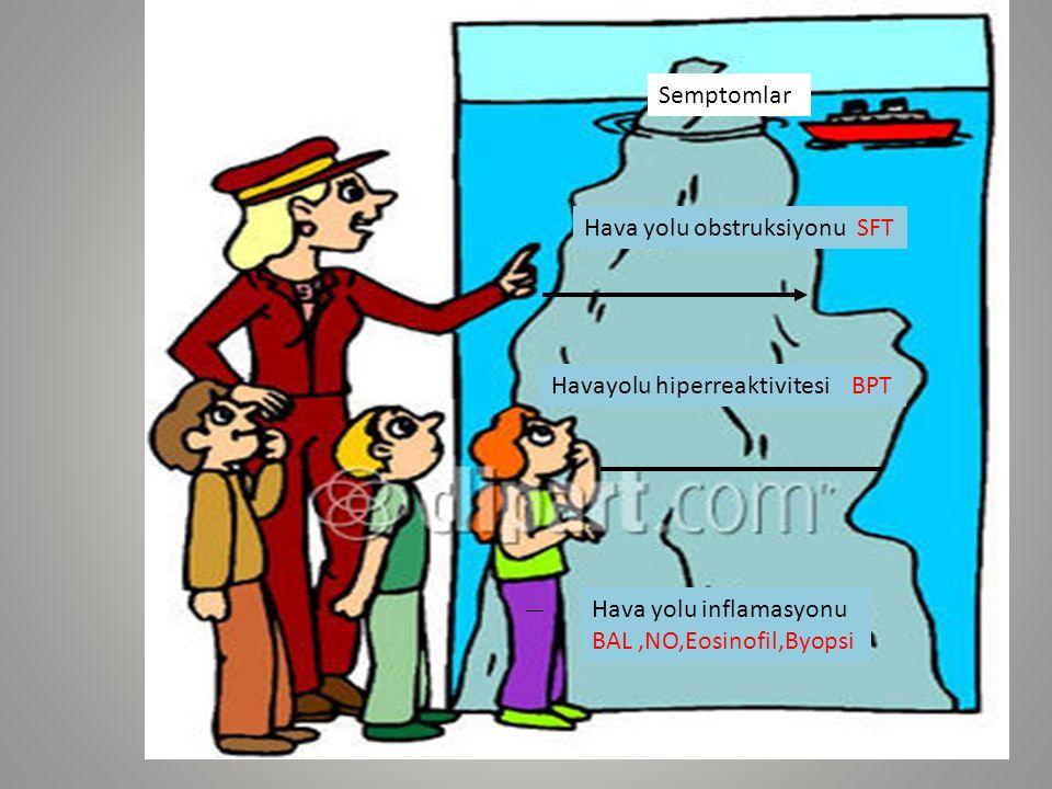 Semptomlar Hava yolu obstruksiyonu SFT. Havayolu hiperreaktivitesi BPT.