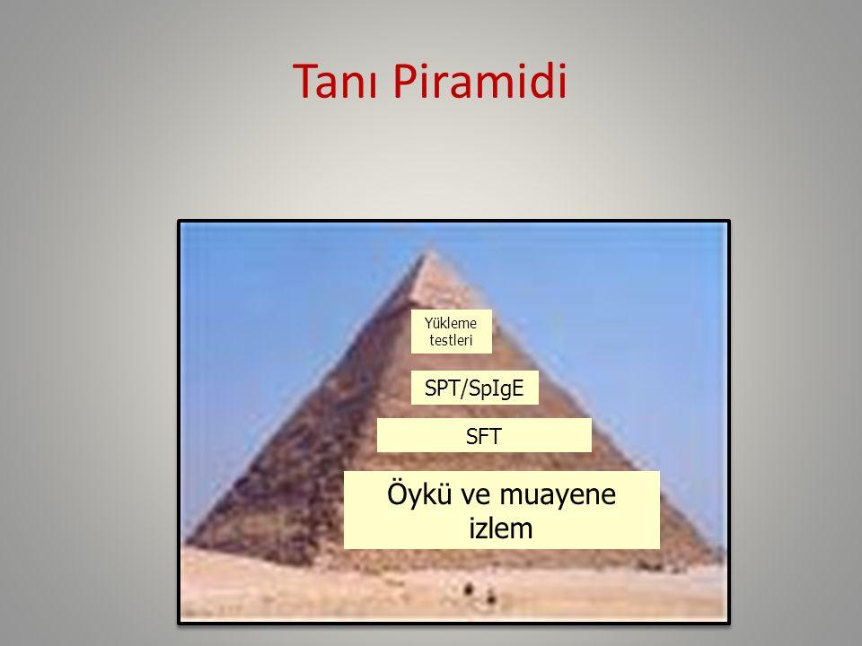 Tanı Piramidi Yükleme testleri SPT/SpIgE SFT Öykü ve muayene izlem