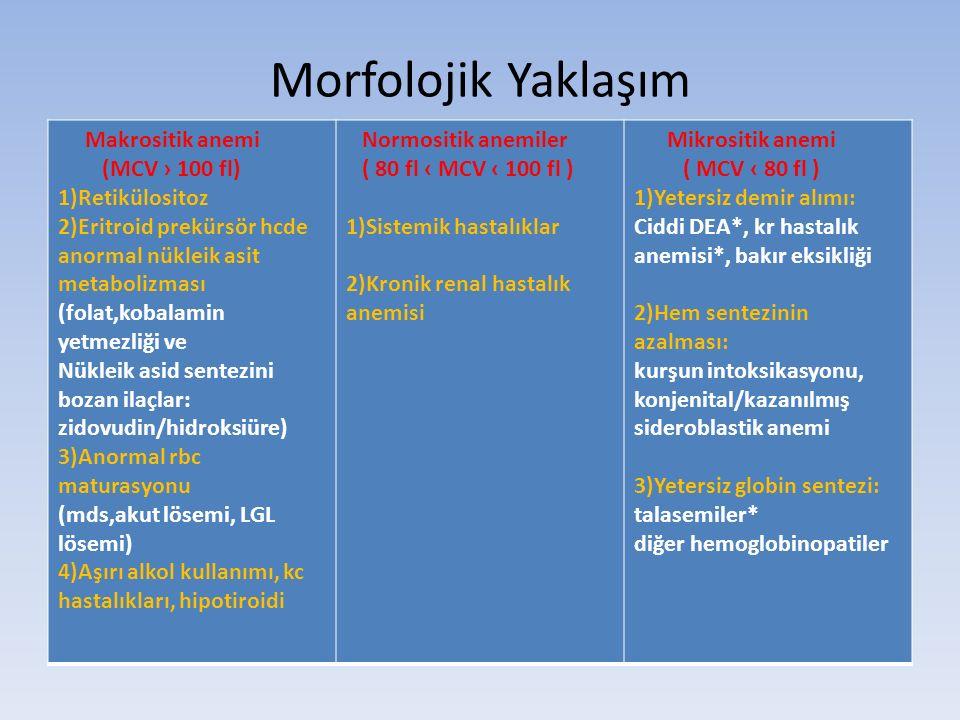 Morfolojik Yaklaşım Makrositik anemi (MCV › 100 fl) 1)Retikülositoz