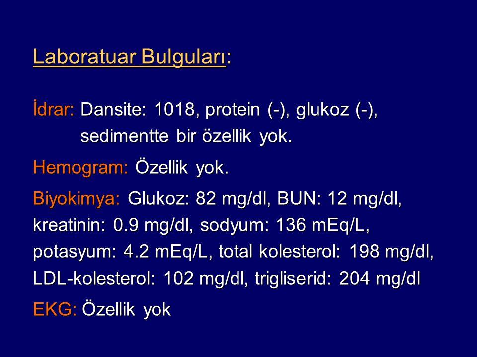 Laboratuar Bulguları: