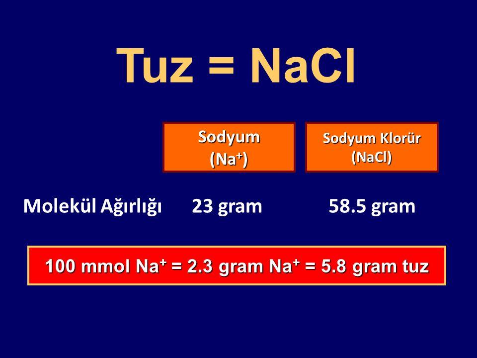 100 mmol Na+ = 2.3 gram Na+ = 5.8 gram tuz