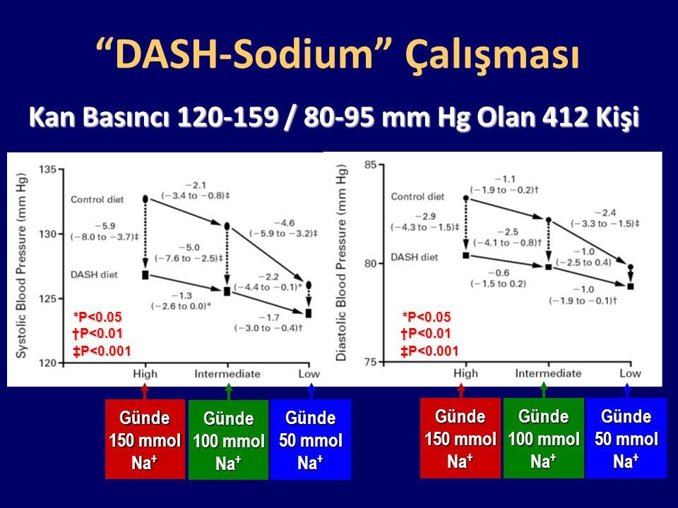 DASH-Sodium Çalışması
