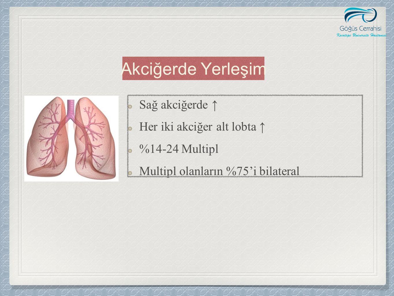 Akciğerde Yerleşim Sağ akciğerde ↑ Her iki akciğer alt lobta ↑