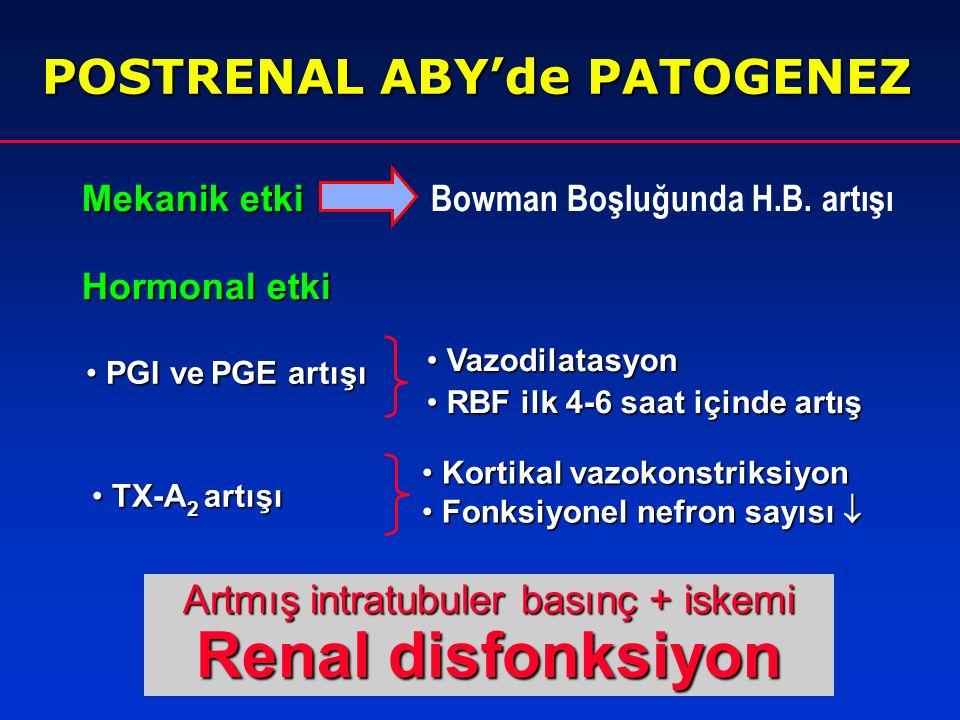 Artmış intratubuler basınç + iskemi