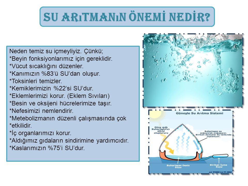 Su Arıtmanın Önemİ Nedİr