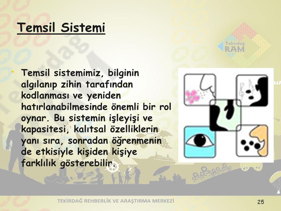 Temsil Sistemi