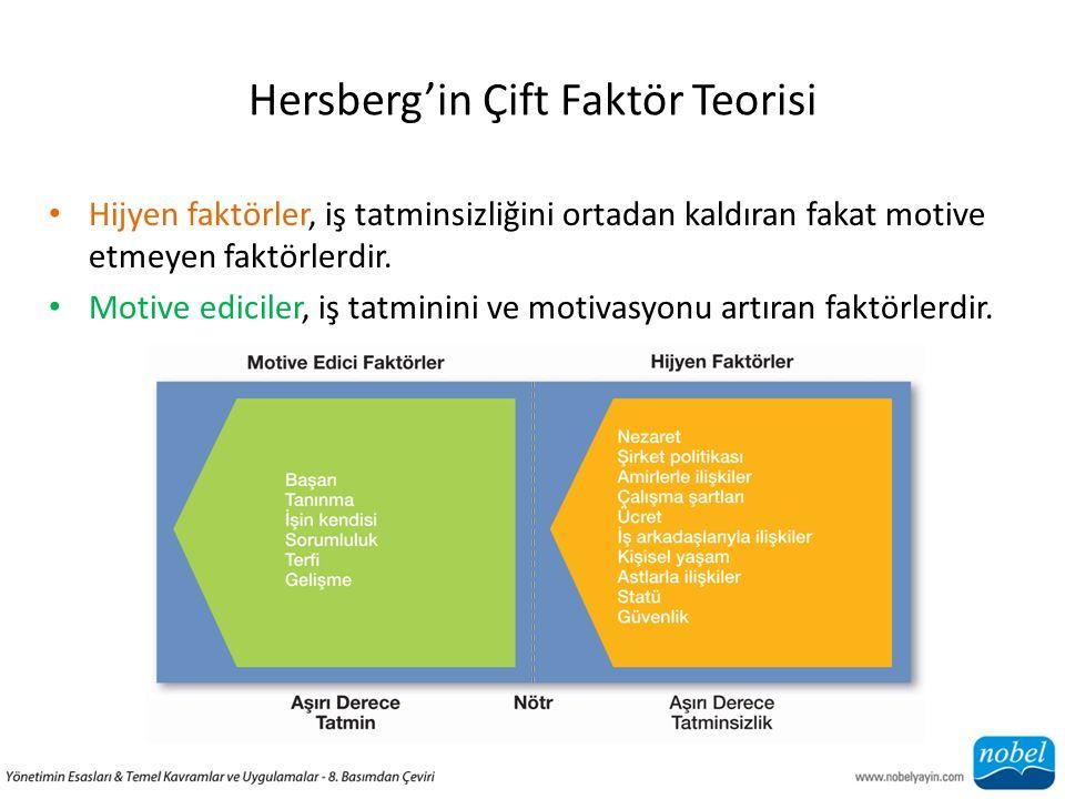 Hersberg'in Çift Faktör Teorisi