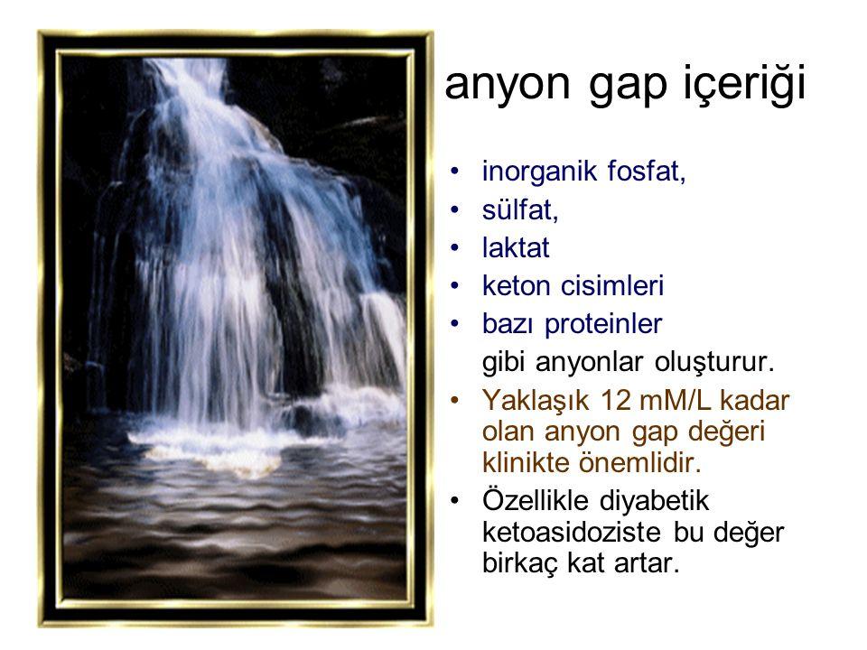 anyon gap içeriği inorganik fosfat, sülfat, laktat keton cisimleri